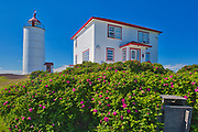 Lighthouse on the island of Isle-Verte in the St. Lawrence River with wild roses in teh foreground<br />