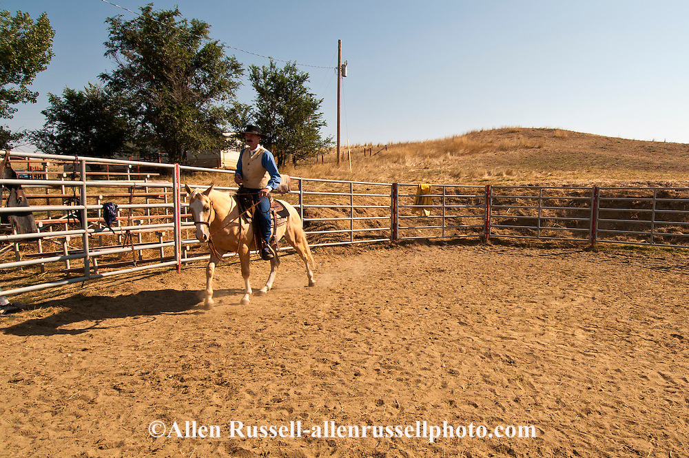Montana cowboy, horse trainer, Doyle Parker works 2yr colt in roundpen