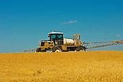 applying herbicide (Roundup1) on Wheat var. Superb_<br /> Fairlight<br /> Saskatchewan<br /> Canada