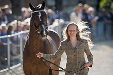 First Horse Inspection - Badminton 2016