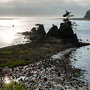Siletz river. Lincoln City, Oregon.