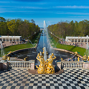 The Grand Cascade And Samson Fountain In Peterhof, Saint Petersburg