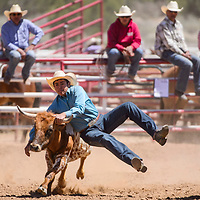 Steer wrestler Rooster Yazzie grabs hold of his steer during the Jacobs NNRA Rodeo at the Grants Rodeo Arena Saturday.