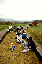 TN: Tennessee Great Smoky Mountains National Park, Mtns, Hayride at Cades Cove     .Photo Copyright: Lee Foster, lee@fostertravel.com, www.fostertravel.com, (510) 549-2202.Image: tnsmok204