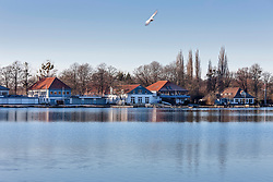 Houses with bare trees by Maschsee lake