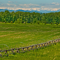 Fair weather cumulus clouds drift over pastures in Montana's Gallatin Valley, near Bozeman.  The Tobacco Root Mountains rise in the background.