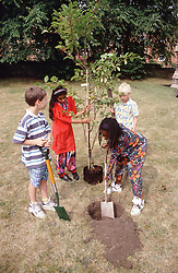 Multiracial group of young children planting tree in park,