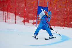 Technician, Women's Giant Slalom at the 2014 Sochi Winter Paralympic Games, Russia