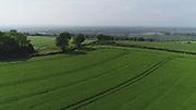 Crops growing in June 2018 near Ardee, Co Louth