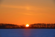 Sun rising over the prairie landscape with shelterbelt trees<br /> Grande Pointe<br /> Manitoba<br /> Canada