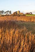 Dramatic evening light winter landscape reed-beds and church, Ramsholt, Suffolk, England, UK