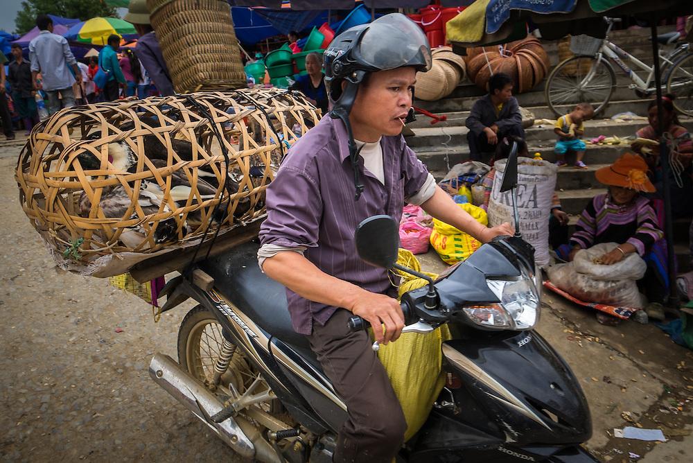 BAC HA, VIETNAM - CIRCA SEPTEMBER 2014:  Vietnamese man riding motorbike at the Bac Ha sunday market, the biggest minority people market in Northern Vietnam
