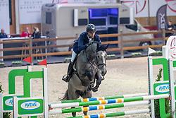 Gielis Davy, BEL, Quickly de Casall 1919 Z<br /> Pavo Hengstencompetitie<br /> Azelhof Lier 2020<br /> © Hippo Foto - Dirk Caremans