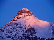 Warm light of sunrise striking Mount Athabasca, 3491 meters high, Banff National Park, Alberta, Canada.