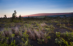 """Mauna Loa (13,679 ft.) receives the first sunlight at sunrise in Hawaii Volcanoes National Park on the Big Island of Hawaii. The photo is taken from the Kulanaokuaiki Campground campground in the park. Mauna Loa is the world's largest shield volcano in terms of volume and area covered. Mauna Loa, an active volcano, means """"Long Mountain"""" in Hawaiian and is one of the five volcanoes that make up the Big Island of Hawaii."""