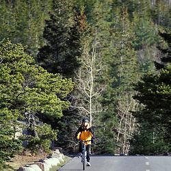 Acadia N.P., ME. Biking. Ocean Drive. Park Loop Road.