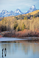 Ice skaters on thin ice.  I think it is here where they realize they have possibly gone to far. Slide Lake and the Grand Tetons in Jackson Hole Wyoming