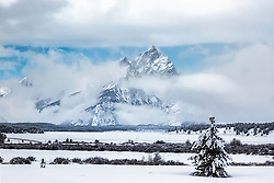 """Not all Christmas Trees need to be decorated.  The Grand Teton and clearing storm in Grand Teton National Park<br /> <br /> For production prints or stock photos click the Purchase Print/License Photo Button in upper Right; for Fine Art """"Custom Prints"""" contact Daryl - 208-709-3250 or dh@greater-yellowstone.com"""