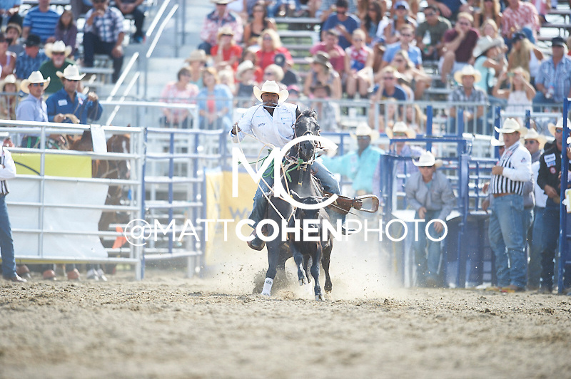 Tie-down roper Cory Solomon of Prairie, TX competes at the Rancho Mission Viejo Rodeo in San Juan Capistrano, CA.  <br /> <br /> <br /> UNEDITED LOW-RES PREVIEW<br /> <br /> <br /> File shown may be an unedited low resolution version used as a proof only. All prints are 100% guaranteed for quality. Sizes 8x10+ come with a version for personal social media. I am currently not selling downloads for commercial/brand use.