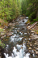The Ohanapecosh River at the Ohanapecosh campground in Mount Rainier National Park in Washington State, USA.