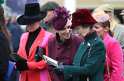 The Princess Royal and Zara Tindall during Ladies Day of the 2019 Cheltenham Festival at Cheltenham Racecourse.
