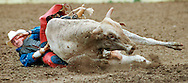 Slug: down.Photo by: Burke.Size: 64p10 x .Caption: this is from the Red Bluff Round up
