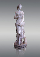 The Roman Venus Statue, the Goddess of Love, follows the style of a modest Aphrodite, known by other Roman replicas are copies of Ttththird century BC Hellenistic Greek statues now lost. Dated circa 1st quarter of second century AD, the Venus statue was excavated from the Odeon of Carthage. The National Bardo Museum, Tunis.   Against a grey background. .<br /> <br /> If you prefer to buy from our ALAMY STOCK LIBRARY page at https://www.alamy.com/portfolio/paul-williams-funkystock/greco-roman-sculptures.html . Type -    BARDO    - into LOWER SEARCH WITHIN GALLERY box - Refine search by adding a subject, place, background colour, museum etc.<br /> <br /> Visit our CLASSICAL WORLD HISTORIC SITES PHOTO COLLECTIONS for more photos to download or buy as wall art prints https://funkystock.photoshelter.com/gallery-collection/The-Romans-Art-Artefacts-Antiquities-Historic-Sites-Pictures-Images/C0000r2uLJJo9_s0c