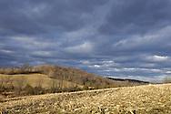 Washingtonville, New York - A cornfield under cloudy skies at Johnson Farm on Jan. 12, 2014,
