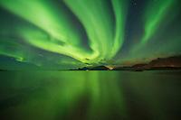 Northern lights fill sky over Ytresand beach, Moskenesøy, Lofoten Islands, Norway
