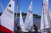 AT5CG6 Sails of sailing dinghy boats River Deben Woodbridge Suffolk