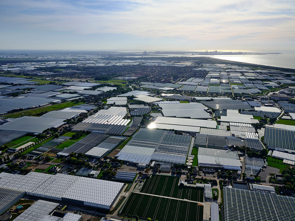 Nederland, Zuid-Holland, Gemeente Westland, 14-09-2019; Glazen stad, Kassengebied Westland, gezien naar 's-Gravenzande.<br /> Greenhouses area in the West of the Netherlands, the heart of the production of vegetables and fruit for export. Between The Hague and Rotterdam.<br /> <br /> luchtfoto (toeslag op standard tarieven);<br /> aerial photo (additional fee required);<br /> copyright foto/photo Siebe Swart