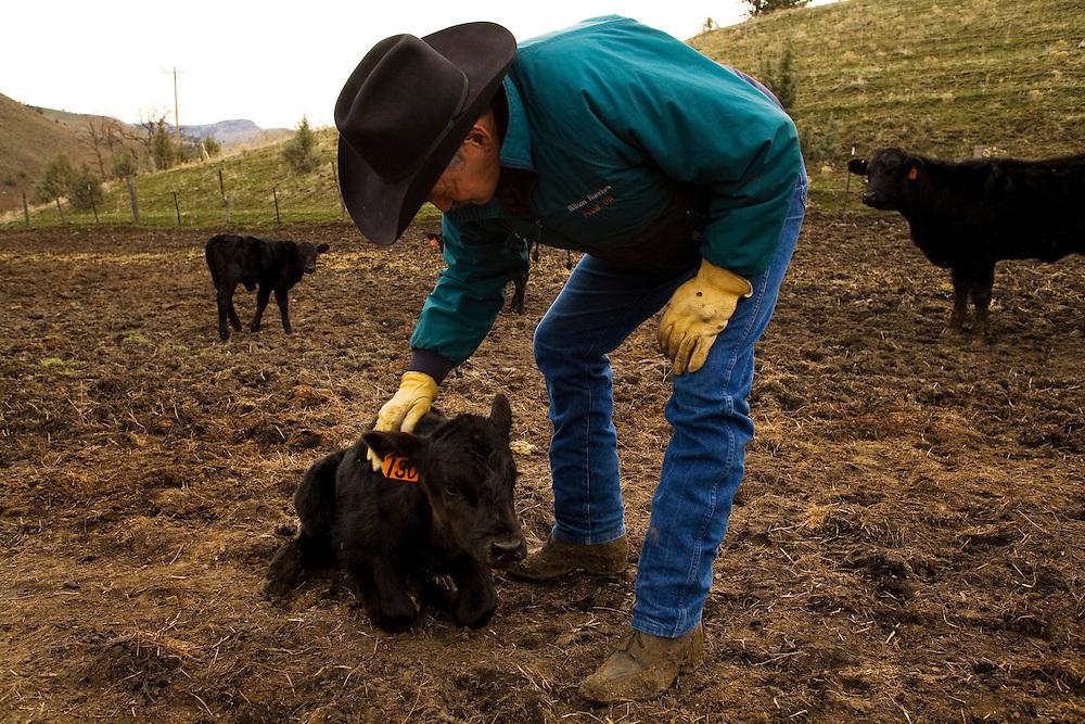 Wilson Ranch Retreat near Fossil Oregon
