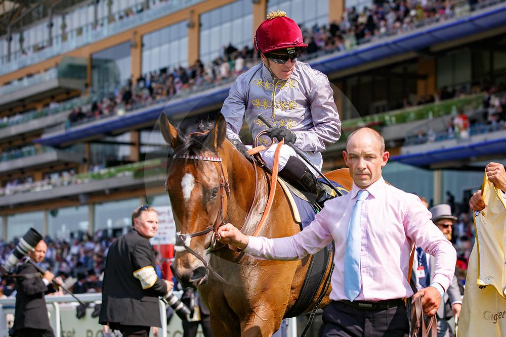 Qemah (G. Benoist) wins Gr.2 The Duke Of Cambridge Stakes, Ascot 21/06/2017, photo: Zuzanna Lupa / Racingfotos.com