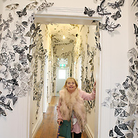 Oakhill Gallery Moth Migration 2019