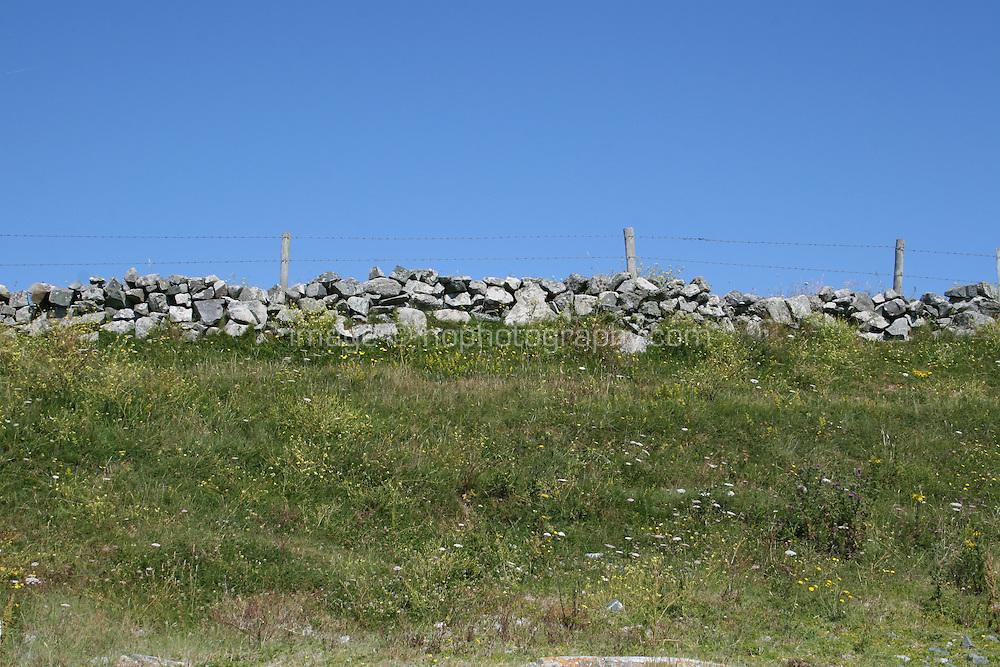 field in Connemara