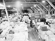 "9904-B18. ""Japanese baggage. 23 freight car loads from Tule Lake Arizona & New Mexico."" (Baggage inside Terminal 4 belonging to Japanese internees repatriating to Japan. story in Oregonian December 27, 1945 pg. 1.)"