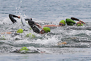 Swimmers during the 2018 Hague Endurance Festival Olympic Triathlon