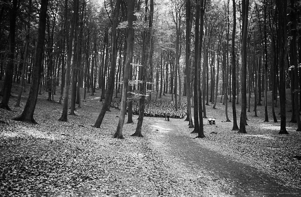 Hitler Youth Camp, Lectures in the Woods (with Two Stenographer Women), Palatinate Forest, 1937