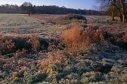 A08JRA Frosty morning fields Suffolk England