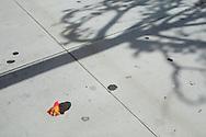 The view on a sidewalk in  San Diego, California's North Park neighborhood, Jan. 2, 2010.