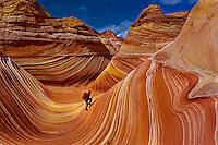 "Hiker exploring ""The Wave"", Coyote Buttes, Paria Canyon-Vermillion Cliffs Wilderness Area, Utah-Arizona border, USA"