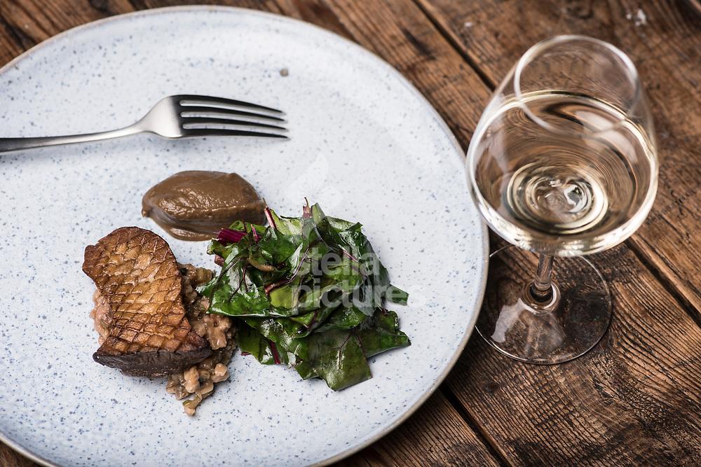 King oyster mushrooms/spelt/rainbow chard/mushroom ketchup at 'Salon' in Brixton<br /> Picture by Daniel Hambury/Stella Pictures Ltd 07813022858<br /> 11/09/2017