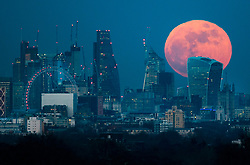 **2018 Pictures of the year by London News Pictures**<br /> 31/01/2018.  London, UK. A  full blue supermoon rises behind 20 Fenchurch Street, known as the Walkie-Talkie bulding, as it rises over central London. Two full moons in the same calendar month is also know as a blue moon. Photo credit: Peter Macdiarmid/LNP