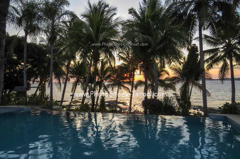 Palm trees at sunset at a tourist resort, Madagascar