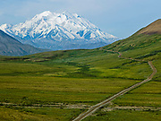 Denali National Park, Alaska.  A clear morning and the road to Eielson Visitor Center