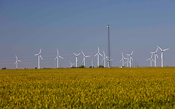 Wind farm turbines in a rural american field with a clear sky.