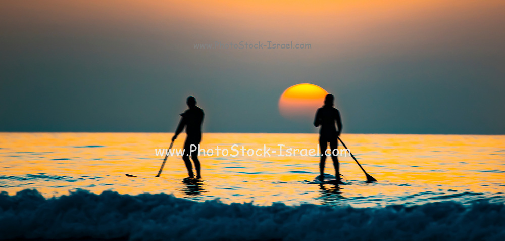 Silhouette of sup surfers in the Mediterranean sea at Sunset . Photographed off the Beit Yanai Beach, Israel