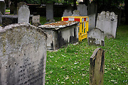 Construction fencing among the historical Victorian headstones of Bunhill Fields cemetery in the City of London.