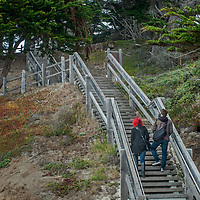 A couple hikes up stairs from a beach in Fitzgerald Marine Reserve in Moss Beach, California. Cyoress Trees grove above.