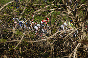 Sunday 5th April 2015: Images from the Oude Kwaremont climb during the men's and women's Ronde van Vlaanderen races.